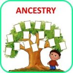Ancestry Family Tree APK Download