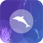 Dolphin VR APK Download